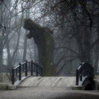 Про мосток.... :: Юрий Цыплятников
