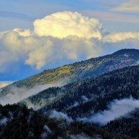 Туманы тянутся к облакам :: Сергей Чиняев
