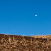 Луна и .... :: Сергей Рычков