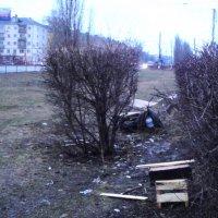 Приюты для крыс и мышей :: Лебедев Виктор