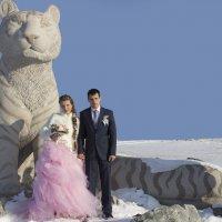 Свадьба Анастасии и Ильи :: Инесса Тетерина