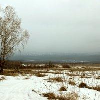 Алексеевская ферма :: Олег  Царёв