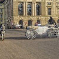 Вена 2015 :: Константин Король