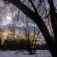 на закате :: Вера Кораблёва