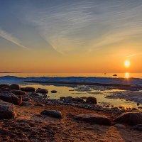 Закат на Финском заливе :: Максим Сорокин