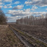 Весна :: Александр Овчаров