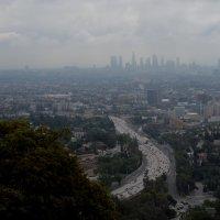 Атмосфера Лос-Анджелеса :: Ирина Зайцева
