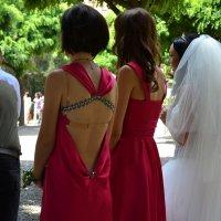 Подружки невесты :: shabof