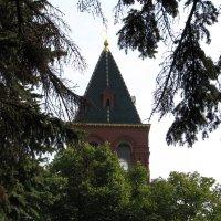 Сторожевая башня :: Grey Bishop