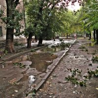 а просто летний дождь прошел... :: Irina