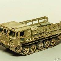 АТС-59 Г, одной из армий Ближнего Востока :: Валерий Смирнов