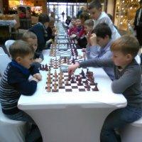 Юные шахматисты :: veera (veerra)