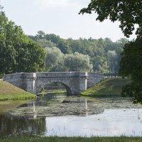 Каменный мостик :: Светлана