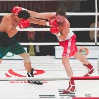Профессиональный бокс :: Александр Колесников
