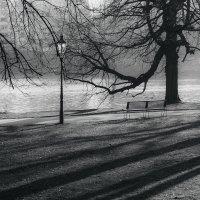 Одиночество :: Алексей Морозов