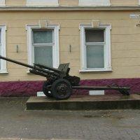 Старая  пушка  в  Ивано - Франковске :: Андрей  Васильевич Коляскин