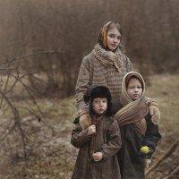 Последний урожай :: Надежда Шибина