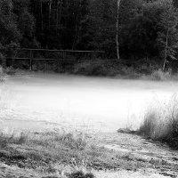Туман :: Елена Вохмина