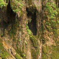 плачущая пещера :: Assel Baluanova