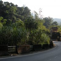 Дорога  в горах  Тайваня :: Виталий  Селиванов
