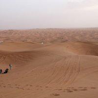 Пустыня   Сафари в песках :: Виталий  Селиванов