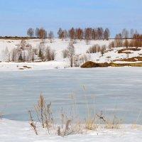 Весна на севере :: Галина Новинская