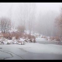 Туманное утро ноября :: Ольга Истомина