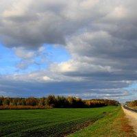 Дорожный  пейзаж.... :: Валерия  Полещикова