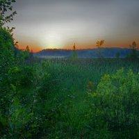 Закат над болотом :: Валерий Талашов