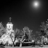 Лунная зимняя ночь... :: Алёна