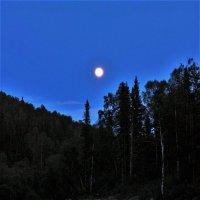 Вечная спутница Земли :: Сергей Чиняев