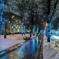 Бульвар :: Андрей Никитин