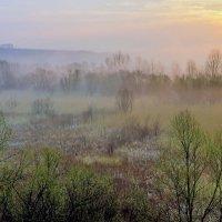 Утро туманное :: Юрий Стародубцев