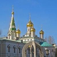 Новодевичий монастырь :: Елена
