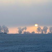 Последний день Зимы... :: Леся Вишня