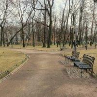 В Михайловском саду. :: Валентина Жукова