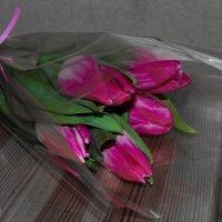 Тюльпаны :: Светлана Малкина