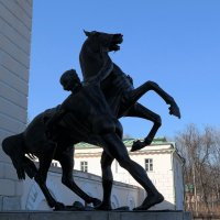 Укротители коней. Москва :: Олег Доможиров