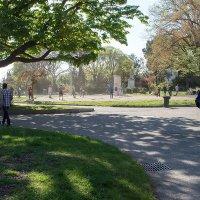 игра в парке :: Elvira Tabisheva Peirano