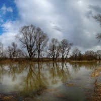 Панорама, весенний паводок на протоке. :: Виктор Гришенков