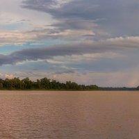 Дождь прошёл :: svabboy photo
