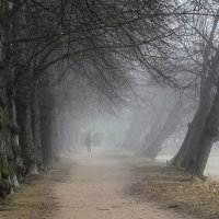 В легком тумане..... :: Юрий Цыплятников