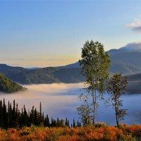 Там, под туманом шепчется река :: Сергей Чиняев