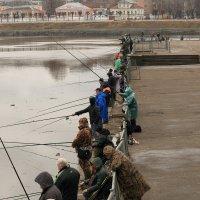 Тверские рыбаки :: александр пеньков