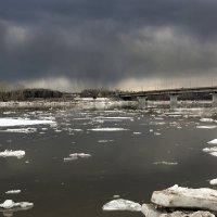 Река пошла.... :: Сергей Добрыднев