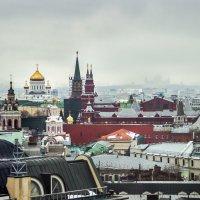 Московские крыши... :: Елена Бразис