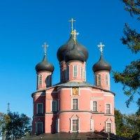 Донской монастырь :: Андрей Егоров