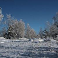 Такой вспоминаем мы зиму сейчас... :: Александр Попов
