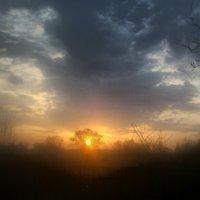 С добрым утром, страна! :: Valentina Ariel