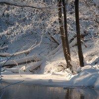 Утренний свет :: Дмитрий Доронин